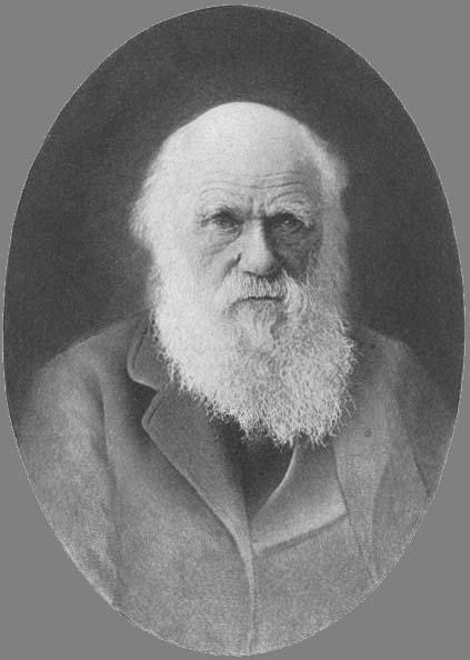 charles-darwin